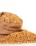 soybeans 2039642