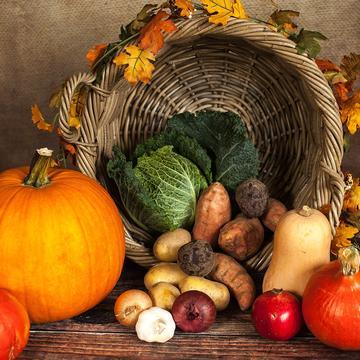 pumpkin 1768857